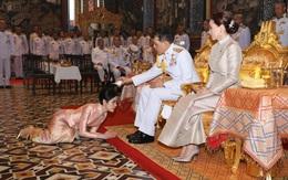2 Hoàng hậu Thái Lan cùng nhau xuất hiện, chỉ qua một bức ảnh là thấy rõ địa vị hiện tại trong hậu cung đang nghiêng về bên nào