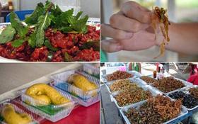 """5 món ăn ở Thái Lan mà phải là """"thần kinh thép"""" mới dám thử hết"""