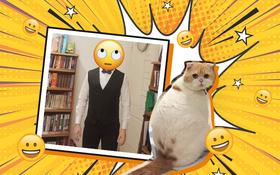 """Có mỗi chuyện """"mua mèo ở đâu"""" cũng gây bão MXH? Ủa mệt không? Mệt thì coi cẩm nang để hỏi phát ăn luôn nè!"""