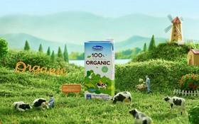 """Giải mã xu hướng Organic – """"Cơn sốt"""" sống xanh từ Âu, Mỹ"""