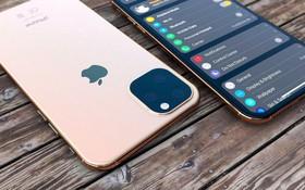 iPhone 2019 sắc nét như dao cạo qua ảnh dựng mới nhất, bóng lộn sang chảnh miễn chê