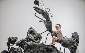 Người nghệ sĩ biến những cành cây trơ trụi từ vụ cháy rừng Hà Tĩnh thành tác phẩm nghệ thuật đương đại