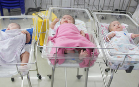 Mẹ đẻ ở bệnh viện Từ Dũ rồi bỏ đi biệt tích, 3 bé gái 4 tháng tuổi phải chuyển đến nơi nuôi trẻ mồ côi trước Tết