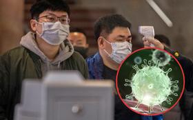 41 người tử vong và 13 thành phố bị phong tỏa vì virus Vũ Hán - nó đã lây lan nhanh như thế nào?