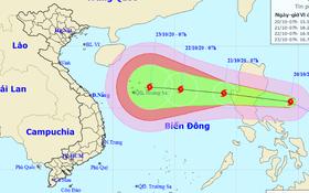Áp thấp nhiệt đới thành bão số 8, có lúc giật cấp 14 và hướng vào miền Trung
