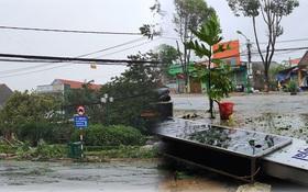 ẢNH: Bão số 9 siêu mạnh đang áp sát Quảng Ngãi, nhà tốc mái, cây xanh ngã đổ nằm la liệt trên đường