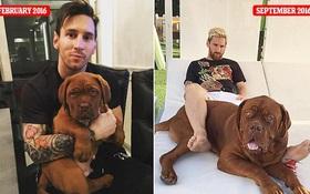 Chú chó khổng lồ bị 3 cha con Messi xoay như chong chóng trên sân vườn