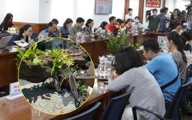TP.HCM: Họp báo vụ cây phượng bật gốc, đè 1 học sinh tử vong và khiến 12 học sinh khác bị thương