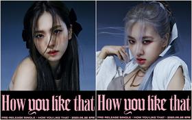 """BLACKPINK tung ảnh teaser rõ mặt 4 thành viên: Nhan sắc hút hồn đẹp như tiên tử, tên bài comeback hoá ra đã được fan đoán """"trúng phóc"""""""