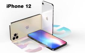iPhone 12 gần như chắc chắn sẽ hỗ trợ mạng 5G