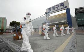 Đã có người Việt đầu tiên tại Hàn Quốc nhiễm COVID-19