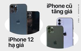 Nghịch lý: iPhone 12 ra mắt, các dòng iPhone cũ không giảm mà còn tăng giá