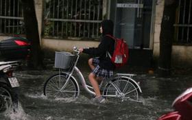 Khẩn: Một tỉnh thành cho học sinh nghỉ học ngày 1⁄12