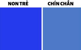 """Quiz: Kiểm tra """"số tuổi của tâm hồn"""" để biết mình đã chín chắn, trải đời ra sao qua bài test màu sắc siêu thú vị"""