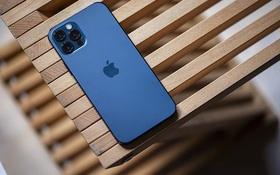 Đây là mẫu iPhone giành giải smartphone tốt nhất thế giới