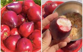 Việt Nam có loại quả lạ khiến ai cũng nhầm lẫn khi lần đầu nhìn thấy, giờ hiếm người trồng nên rất khó ăn được