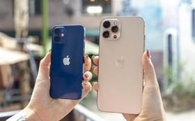 Dạo quanh các đại lý bán lẻ chính hãng Apple, nơi nào có giá iPhone 12 thấp nhất?