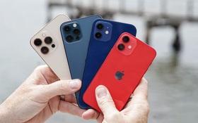 Các mẫu iPhone 12 đang giảm giá mạnh, đặc biệt là iPhone 12 Pro giảm tới 8,5 triệu đồng