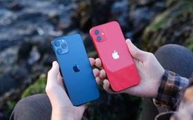 """iPhone 12 đang được giảm giá """"cực mạnh"""""""