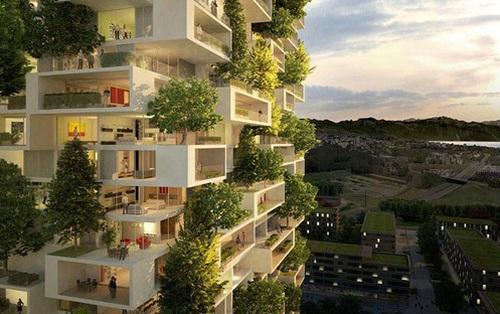 """""""Phản đối trồng cây là một phong trào cộng đồng"""" dù đồng ý hay không, bạn cũng phải hiểu đúng để thế giới có thêm một hi vọng xanh."""
