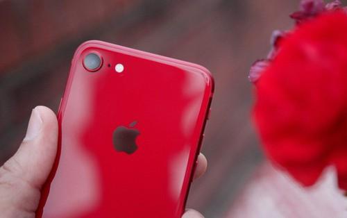 Nóng hổi tin đồn về iPhone SE 2: Giá 9 triệu, mạnh như iPhone 11, ra mắt đầu năm 2020