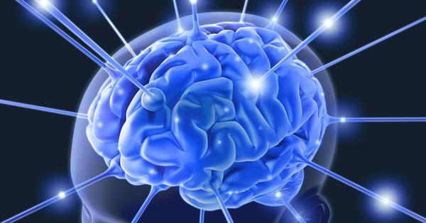 Chỉ cần tuân thủ duy nhất điều này, tế bào não sẽ được bảo vệ tối ưu
