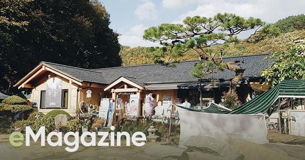 Cuộc gặp gỡ với bố Song Joong Ki tại quê nhà trước siêu đám cưới: Mọi thứ cứ dung dị, bình yên như thế