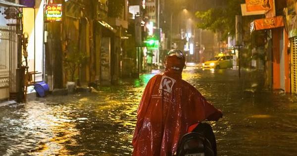 Sài Gòn sau bão số 9: Phố đi bộ thành phố bơi lội, nhà dân hoá bể sinh vật cảnh với đủ loại cá, gián và rắn rết