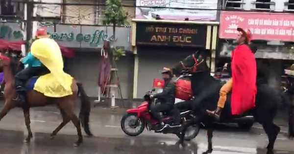 Clip: CĐV Hải Phòng cưỡi ngựa giữa phố để cổ vũ đội tuyển Việt Nam đá chung kết AFF Cup