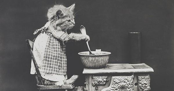 Đây là ảnh chế ''meme'' về các boss chó mèo đầu tiên trong lịch sử, xuất hiện cách đây hơn 100 năm