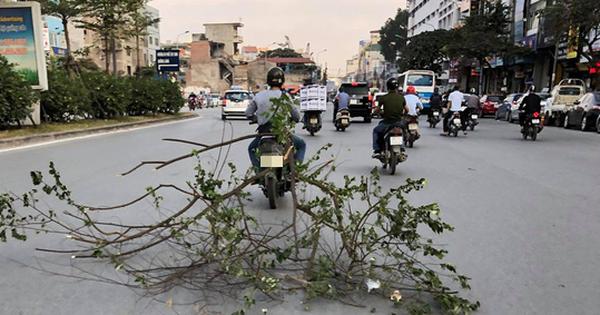 Clip: Thanh niên buộc nguyên cành cây lớn vào xe máy quét dọc đường Trường Chinh