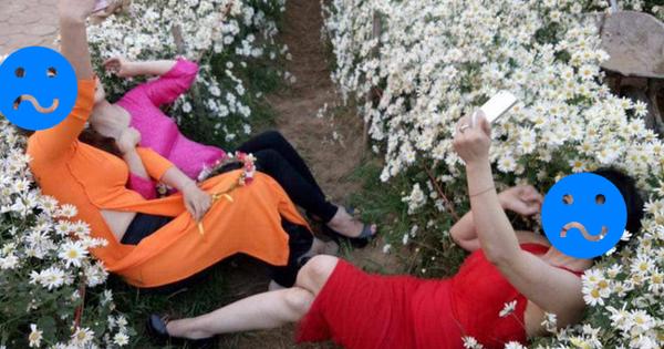 Góc chơi trội: Chán tạo dáng e ấp bên cúc hoạ mi, 3 chị gái rủ nhau nằm hẳn lên luống hoa chụp ảnh