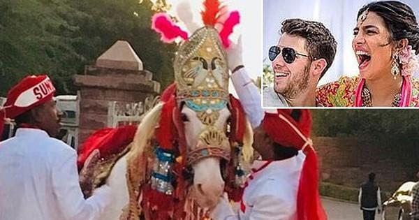 Nick Jonas và Hoa hậu Thế giới chuẩn bị cả ngựa, voi để tổ chức hôn lễ truyền thống Ấn Độ