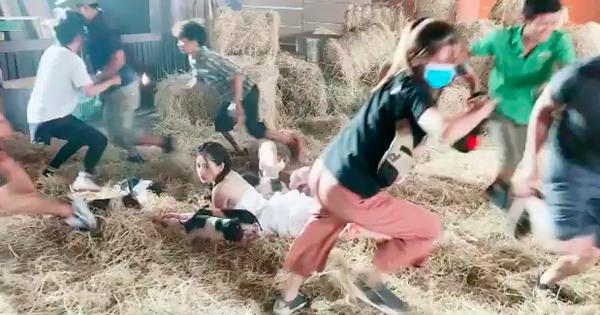 Xem hậu trường Chi Pu quay MV mới biết quay phim với con heo không hề dễ dàng