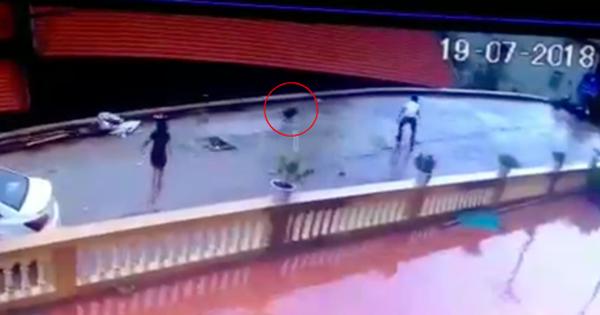 Vĩnh Phúc: Hai thanh niên đi xế hộp phối hợp bắt trộm một con ngỗng