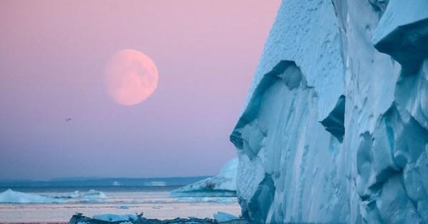 Ngắm vẻ đẹp siêu thực của vịnh băng Ilulissat