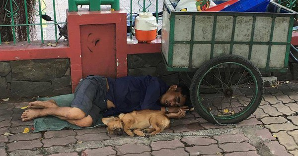 Nghẹn ngào hình ảnh chú chó nằm ngủ ngon lành bên người chủ trên vỉa hè sau những giờ mưu sinh vất vả