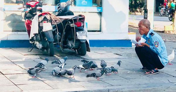 Hình ảnh chú bảo vệ cho đàn chim bồ câu ăn ở vỉa hè Hà Nội khiến nhiều người xúc động