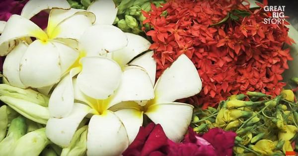 Đặc sản hoa đủ loại rán giòn ở Thái Lan khiến ai đi ngang cũng tình nguyện rút hầu bao