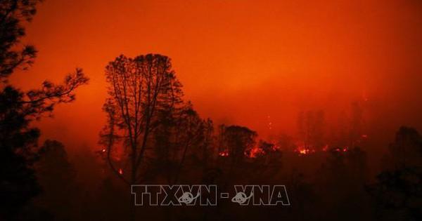 Số người bị coi mất tích do cháy rừng tại California giảm từ 1.200 xuống còn 3