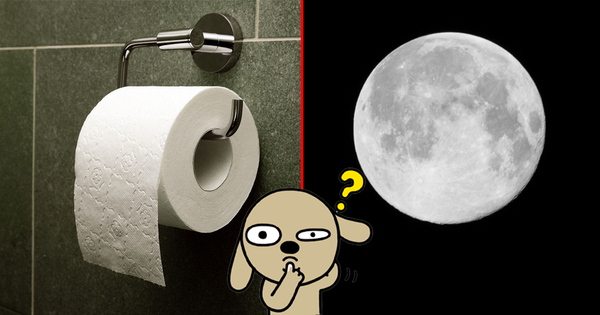Trào lưu selfie ''ngố tàu'' nhất lịch sử Internet: Đua nhau dùng giấy vệ sinh để... biến thành mặt trăng