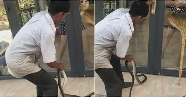 Xôn xao clip người đàn ông cầm con rắn dài hàng mét toan ném vào nhà, người phụ nữ giữ chặt cửa mếu máo sợ hãi