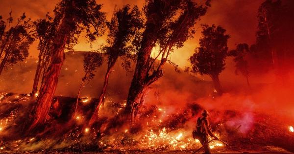 Toàn cảnh Trái đất năm 2019 thực sự ''rực cháy'' theo đúng nghĩa đen: Amazon cháy kỷ lục, nhưng đằng sau còn vấn đề hết sức đáng lo ngại
