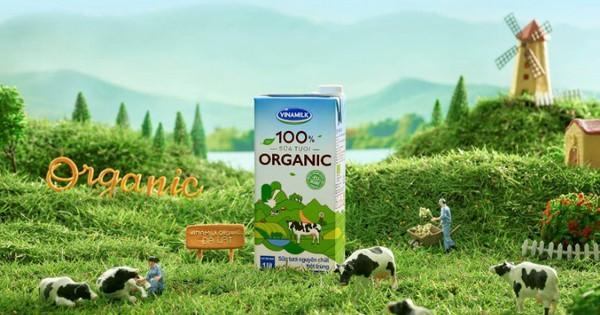 Giải mã xu hướng Organic – ''Cơn sốt'' sống xanh từ Âu, Mỹ