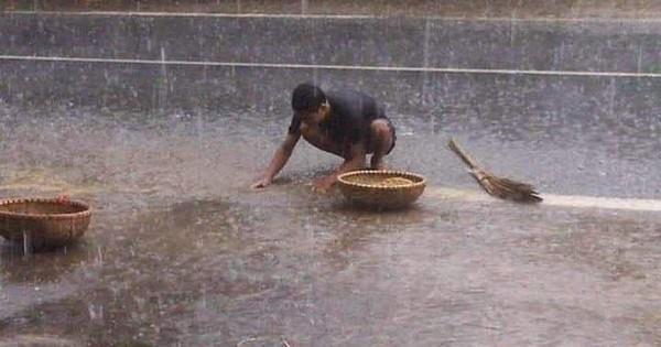 """Nỗi cực """"chạy thóc"""" của người nông dân những ngày mưa nắng thất thường: Chậm chân cái là cả sân thóc ngập trong nước"""