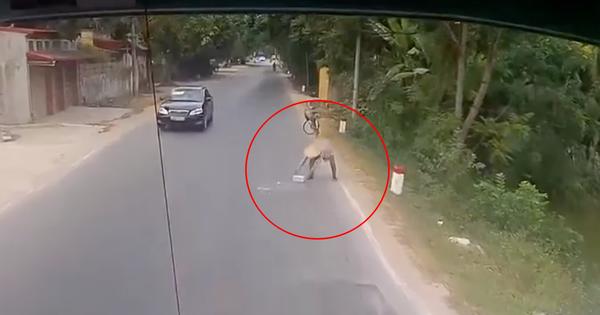 Clip: Người phụ nữ dừng xe đạp dời cục đá nằm giữa đường để tránh nguy hiểm cho người khác nhận ngàn lời khen