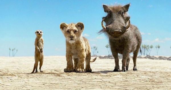 """""""The Lion King"""" xô đổ hàng loạt kỷ lục phòng vé, Disney lại đếm tiền mỏi tay rồi!"""
