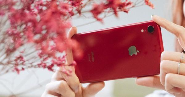 iPhone XR: Chiếc iPhone không đáng để bị người Việt hắt hủi