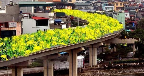 """Đường sắt Cát Linh – Hà Đông bỗng hóa """"hoa vàng trên cỏ xanh"""" qua bàn tay photoshop, thêm loạt lựa chọn bất ngờ được dân mạng ủng hộ rào rào"""