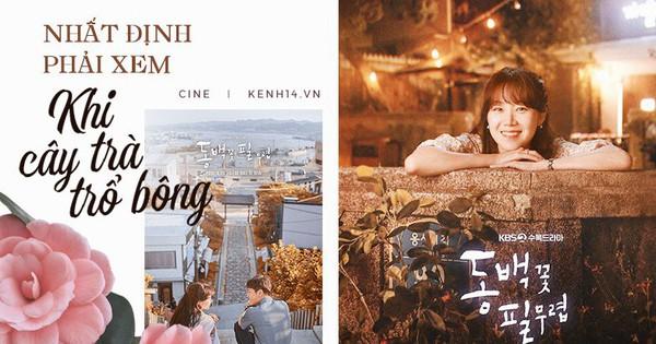 Sẵn sàng lót dép hóng ''Khi Cây Trà Trổ Hoa'' của chị đẹp mê trai trẻ Gong Hyo Jin với cẩm nang siêu yêu